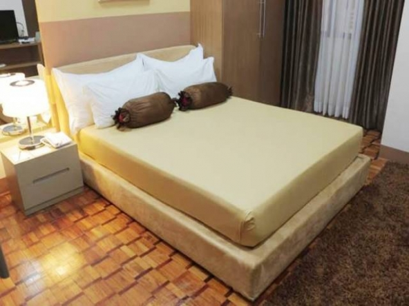 Prince Plaza Studio Type Makati Fully furnished greenbelt